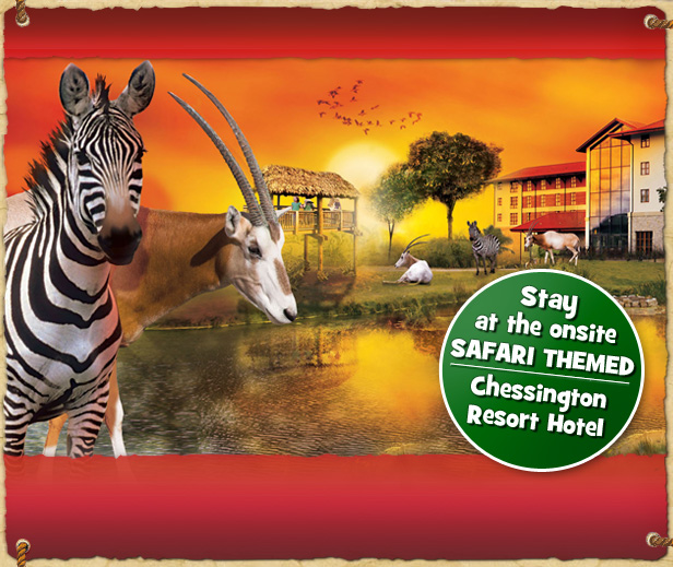 Stay at the Chessington Resort Hotel